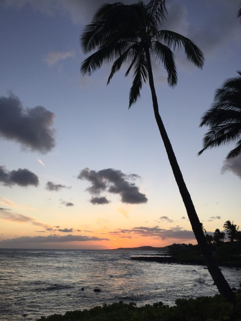Why Hawaii is the Perfect Location for a Winter Beach Vacation